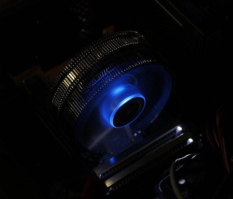 9800_MAX_1.jpg