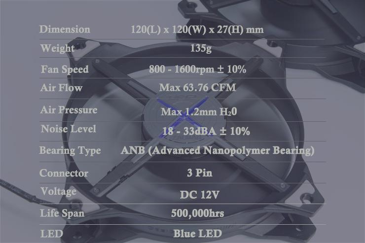 003 SPEC IMG_0110-LIGHT.jpg