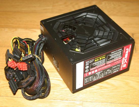 rex5095.jpg