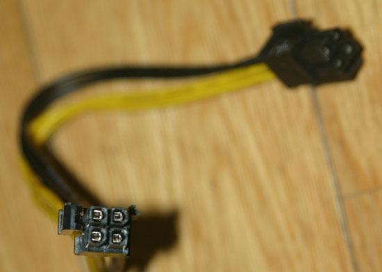 rex5016.jpg