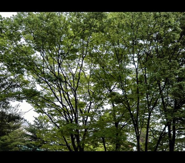 엑타코 방수카메라 T5_33.jpg