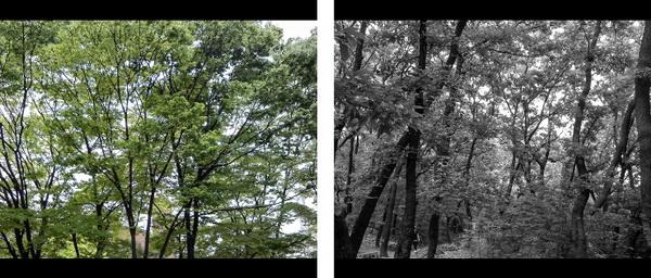 엑타코 방수카메라 T5_40.jpg