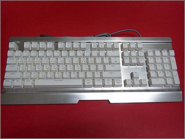 SDC11434.jpg