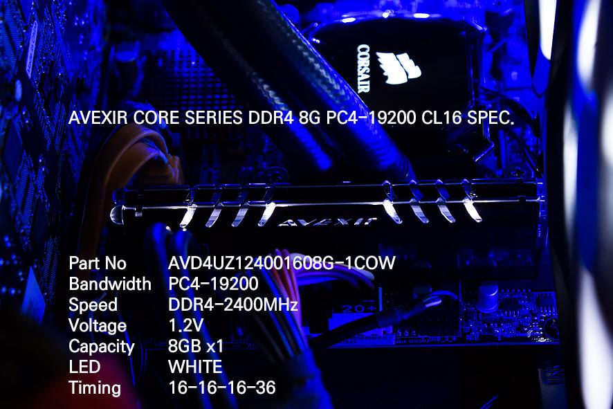 001 SPEC IMG_7049.jpg