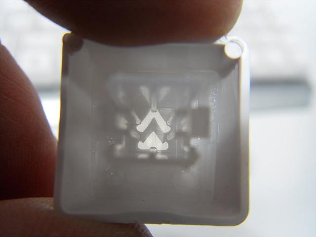 SDC12601.jpg