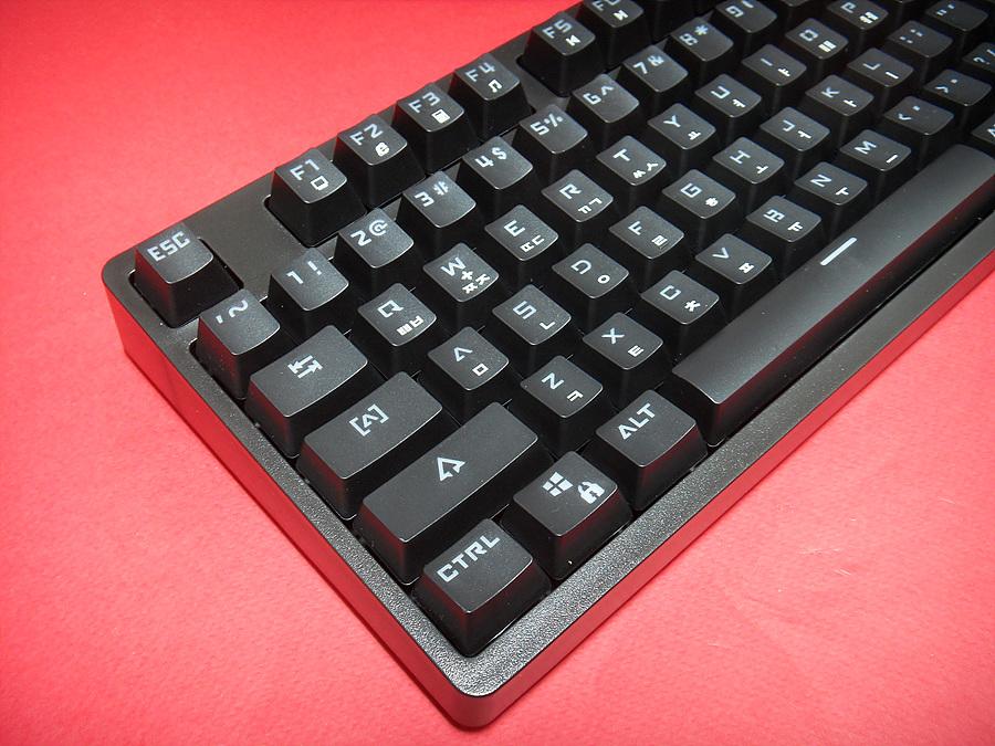SDC13952.jpg