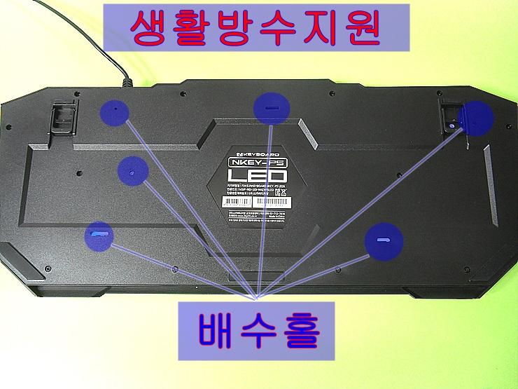 SDC14478.jpg