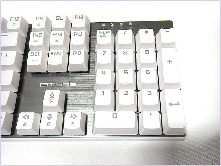 SDC15548.jpg