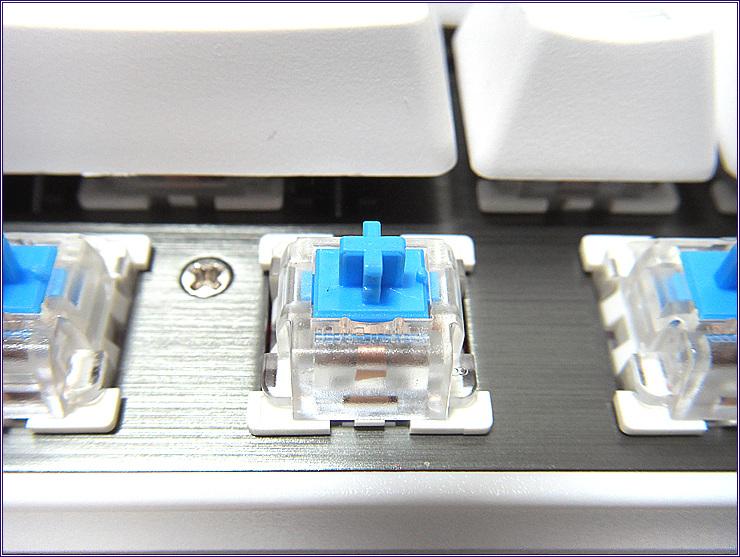 SDC15570.jpg