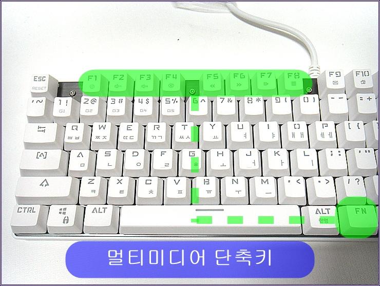 SDC15550.jpg