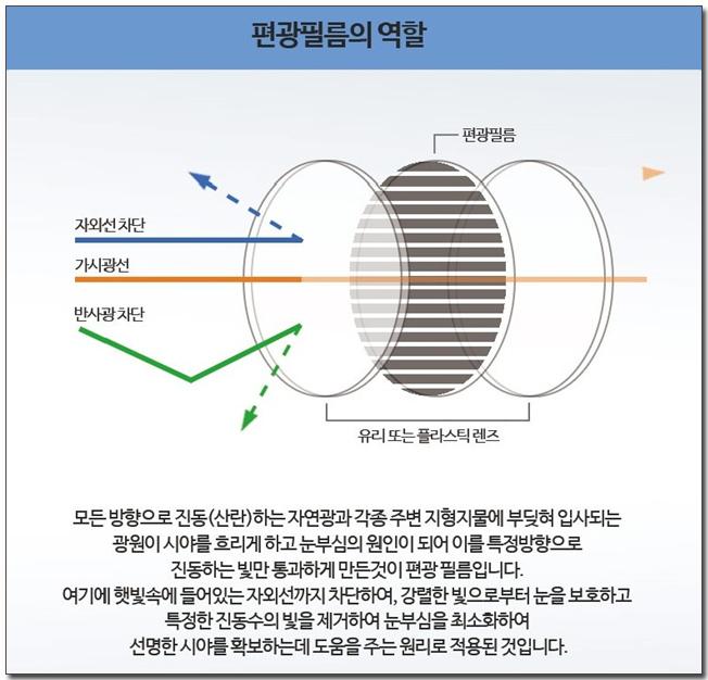 02 편광필름의 역할.jpg