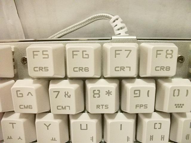 DSCF9048.jpg