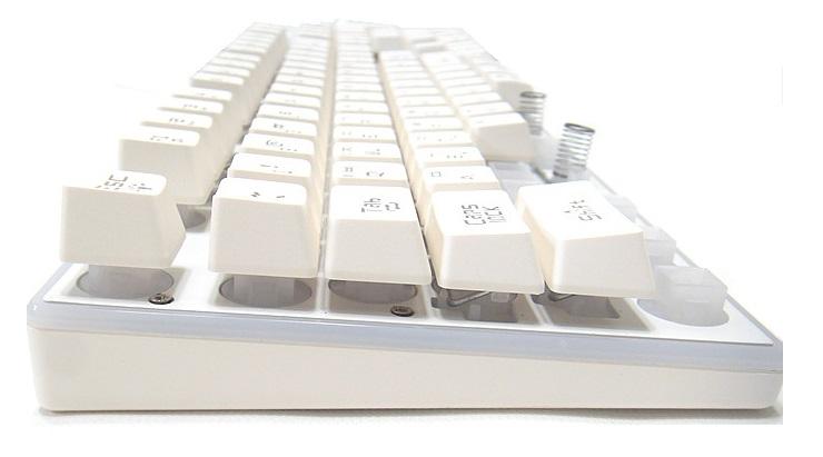 SDC19766.jpg