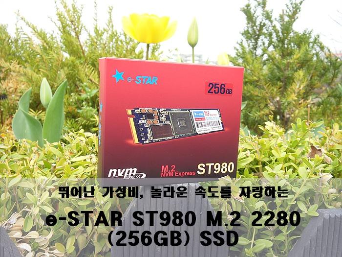 뛰어난 가성비와 놀라운 속도에 반하다. e-STAR ST980 M.2 2280 (256GB) SSD 리뷰 ...