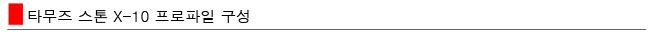 타무즈 스톤 X-10 프로파일 구성 다나와용.jpg