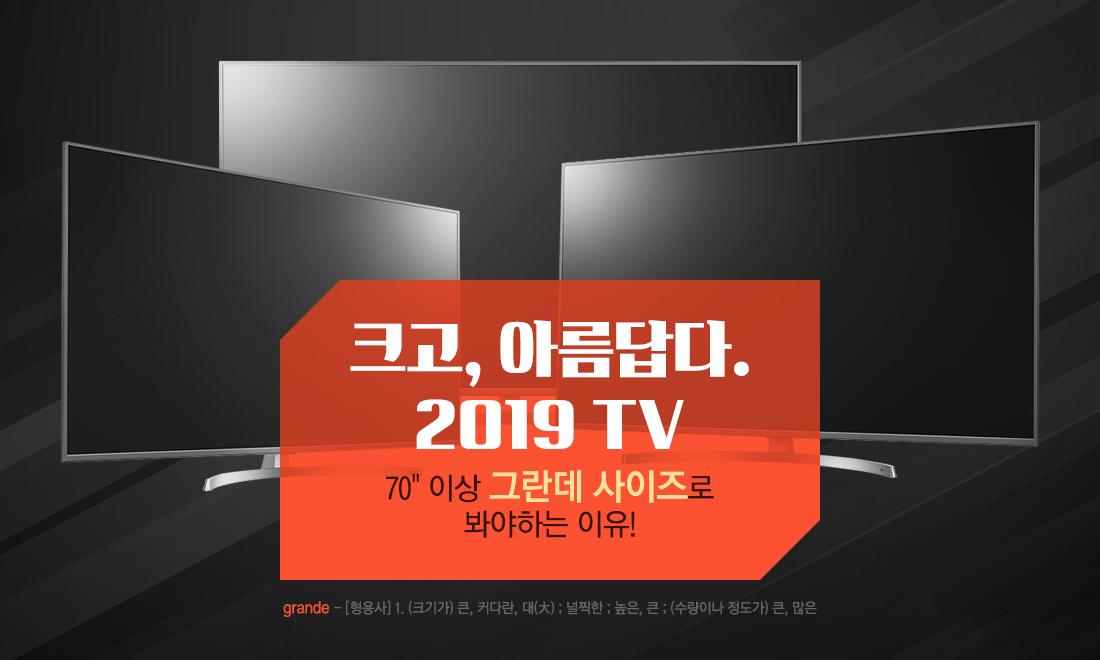 크고, 아름답다. 2019 TV