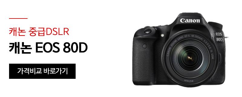[캐논 중급DSLR] 캐논 EOS 80D