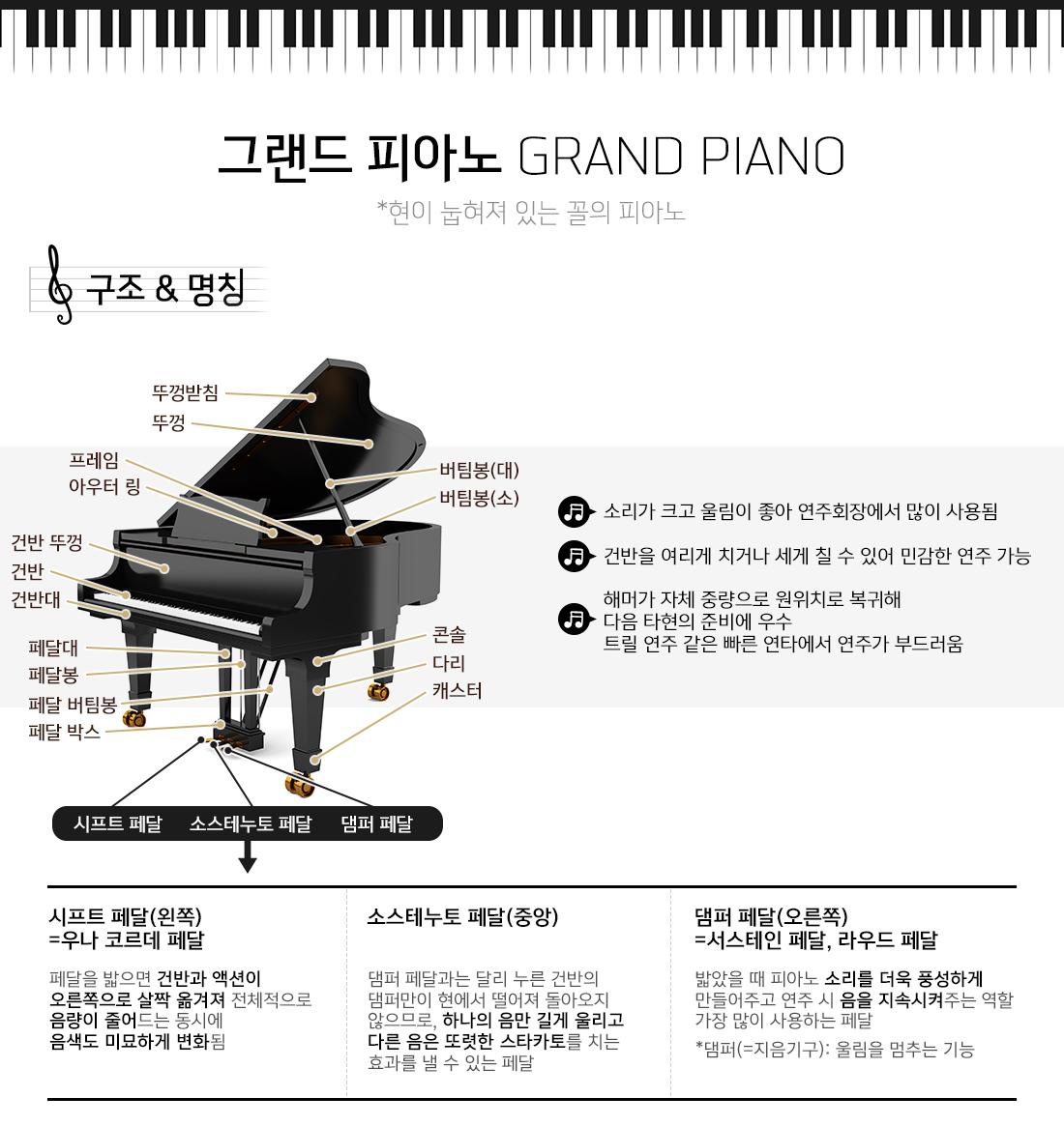 그랜드 피아노 GRAND PIANO 현이 눕혀져 있는 꼴의 피아노