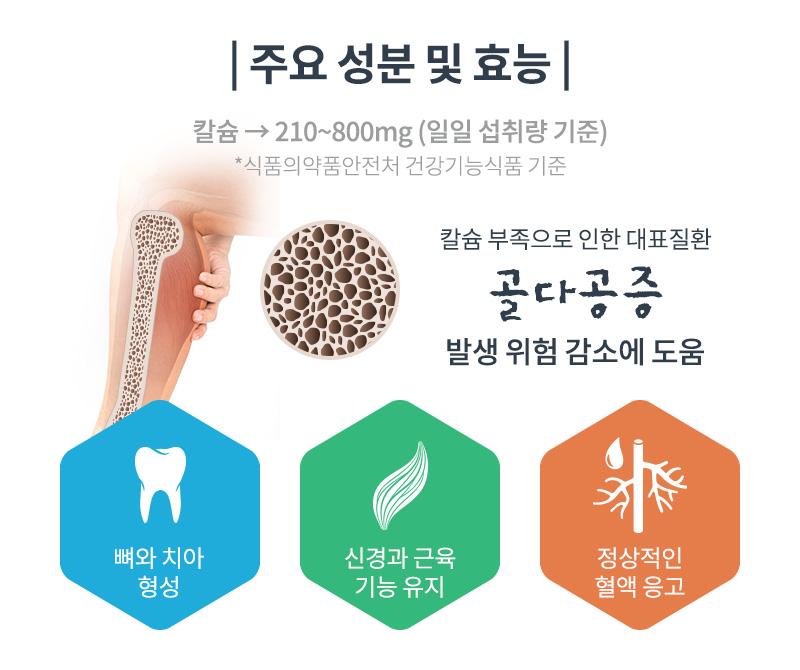 주요 성분 및 효능
