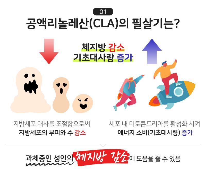 공액리놀레산(CLA)의 필살기는?