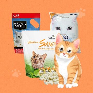 집사들의 영원한 숙제 고양이모래!