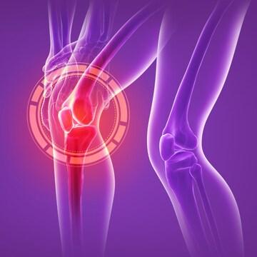 관절/연골 건강을 위한 글루코사민