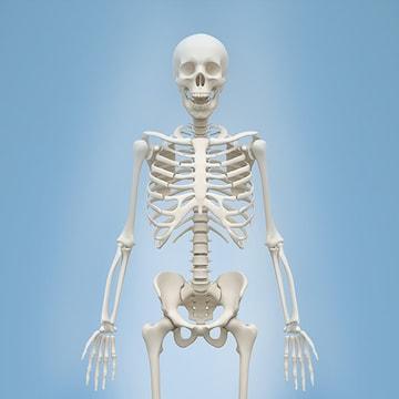 뼈 건강 영양제 #칼마디 #골다공증 #임산부