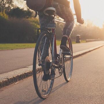 하이브리드 자전거  구매 인포그래픽