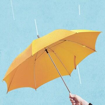 비바람 걱정없는 튼튼한 장우산