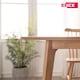 에넥스 ENNEE 피코 이지클린 반원형 식탁 1400 (의자별도)_이미지