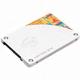 ���� 530 SSD 120GB (�븮...