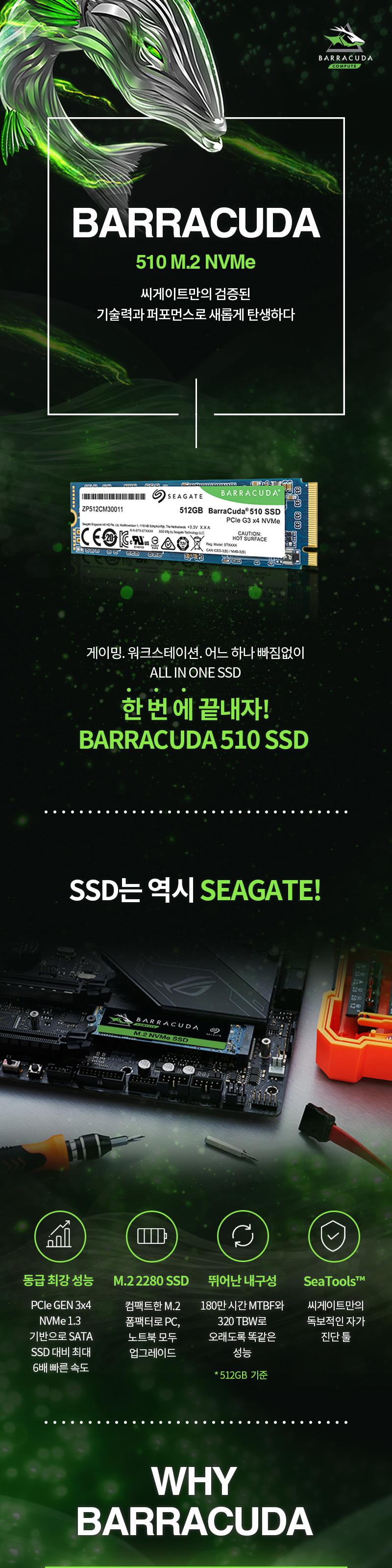 Seagate 바라쿠다 510 M.2 NVMe (256GB)