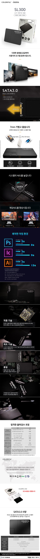COLORFUL SL300 아이보라 (160GB)
