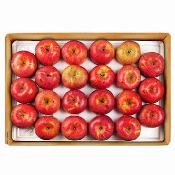 한우리영농조합 장길영 사과 사과 알뜰 중소과 33~46개(과) 10kg