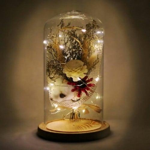 하우스고고  LED 유리돔안 목화배합 대 무드등_이미지