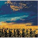 DIY 명화 그림그리기 새벽 해바라기밭