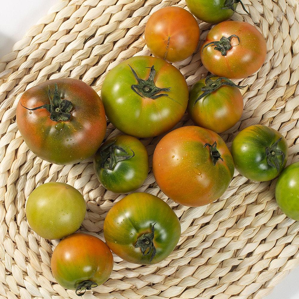 초록자연 대저 짭짤이 토마토 2S 2.5kg