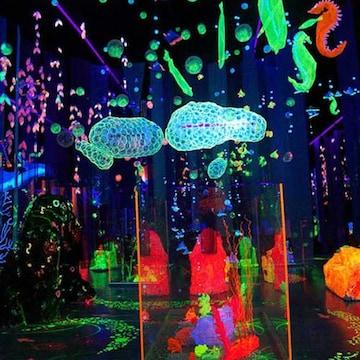 프로방스 빛축제 오색빛패키지 이용권 (청도)(소인)