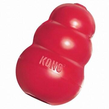 콩(KONG) 클래식(중형, T2)