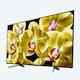 SONY 브라비아 XBR-65X800G 해외구매 (세금/배송료 포함)_이미지