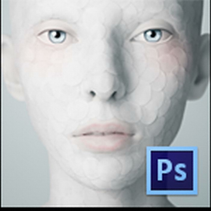 Adobe Photoshop CS6 for Mac (처음사용자용 영문)