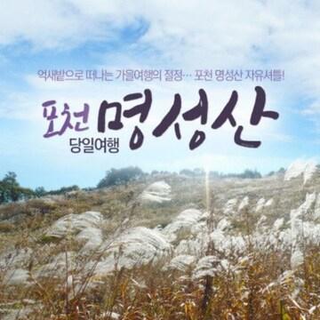 포천 명성산 억새꽃 축제 이용권 (경기)(대인)