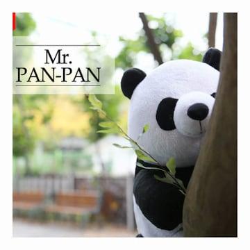 아트박스 ID-001 판다마사지인형 MR.PAN PAN_이미지