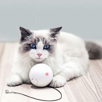 펫케어 스마트캣볼 움직이는 고양이 공 자동장난감_이미지