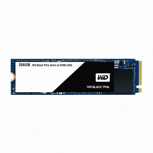 WD  Black M.2 2280 (256GB)_이미지