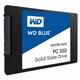 Western Digital WD Blue SSD (250GB)_이미지