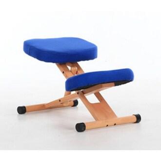 SIT 사무용 척추자세교정 의자_이미지
