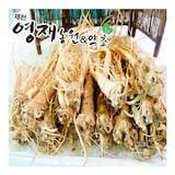 제천영재농원&약초  약도라지 (1kg)_이미지