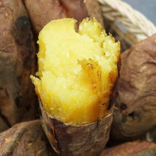 이에프시 맛다름 꿀밤고구마 특상 2.8kg내외 (1개)_이미지