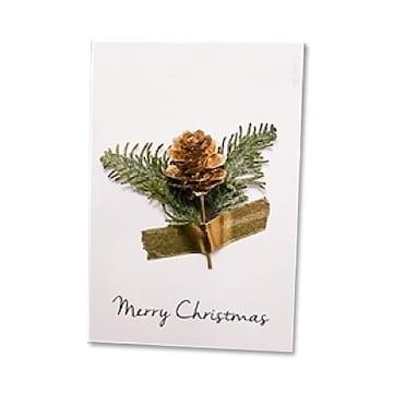 아이씨유 크리스마스 프리저브드 카드 솔방울